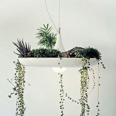 Las lámparas de techo colgaltes puedes tener diseños muy interesantes, sin embargo por lo general sólo tienen una función que es la de alumbrar...
