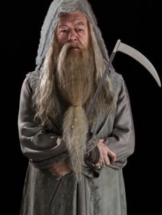...I have come up with a fascinating theory about the Hogwarts Headmaster, Albus Dumbledore. People have said that he is an elderly Ron Weasley and that he's gay but I have a new theory. Dumbledore is The Grim Reaper, AKA Death. Now hear me out, I do have some evidence to back me up here. I assure you I haven't come empty handed so time TO BEGIN....