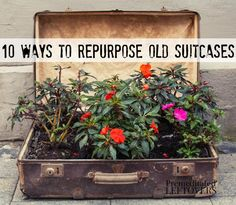 10 Ways to Repurpose Old Suitcases including using an old suitcase to make an herb garden or flower planter