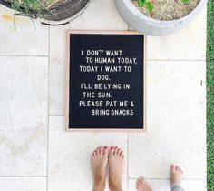 I want to be a dog today quote, letter board quote Words Quotes, Wise Words, Me Quotes, Funny Quotes, Sayings, Felt Letter Board, Felt Letters, Felt Boards, Word Board