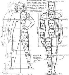 DIBUJO ANATOMÍA HUMANA Y ANIMAL: Proporciones del dibujo de fig. humana. Cuerpo