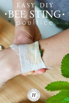 Easy DIY Bee Sting Poultice | Herbal Academy | As beautiful as it is to be outdoors in nature with the bees—sometimes you get stung! Learn how to make an herbal DIY bee sting poultice in this article.