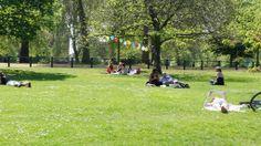 Good Friday veraniego en el parque | Flickr - Photo Sharing!