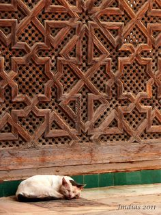 SLEEPING TIME IN FES - Fes, Fes