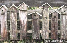 "rustic ""birdhouse"" fence"