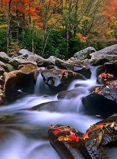 Pigeon River ,Great Smoky Mountains National Park,Gatlinburg, USA: