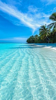 Tropical Beaches With Palm Trees Natur Wallpaper, Ocean Wallpaper, Summer Wallpaper, Scenery Wallpaper, Landscape Wallpaper, Paradise Wallpaper, Holiday Wallpaper, Beautiful Nature Wallpaper, Beautiful Landscapes