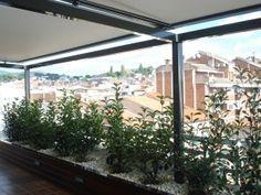 Pérgola doble de alumino con toldos motorizados Exterior, Windows, Outdoor Rooms, Ramen, Window