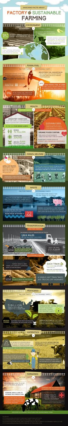 You should care about factory farming. Here's why!