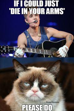 #GrumpyCat #JustinBieber #DieInYourArms #JonaMeme