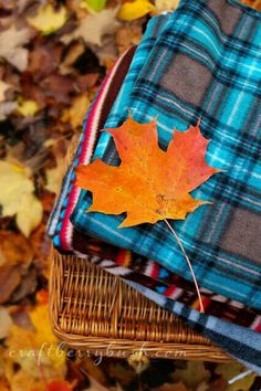 Turquoise and brown plaid picnic blanket on a fall day