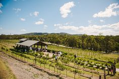vintage-winery-wedding016.jpg (550×367)
