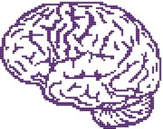 Anatomy Brain cross stitch PDF pattern - Instant download - Cross Stitch Planet
