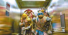 《忍者龜:變種世代》不僅票房亮眼,更重新燃起沉寂已久的忍者龜風潮。