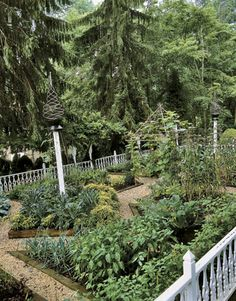 Enclosed by an ornamental wooden fence, the primary vegetable garden features a spiral finial mounted on a pole for beans, impromptu bamboo gazebos lashed together with zip ties, and geometric raised beds filled with vegetables.    Read more: A Pennsylvania Garden - Country Living