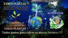 Morada dos Guerreiros Escolhidos: VAMOS PLANTAR !!!