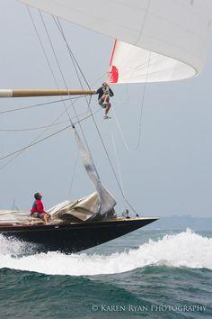 Sailing - J Class Racing