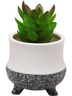 Modern Decorative Small Ceramic Succulent Planter Flower Pot / Desktop Organizer Pen Holder - MyGift® ❤ MyGift