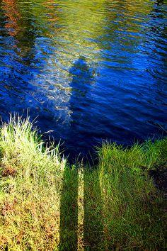 Metolius River   June10_2-12