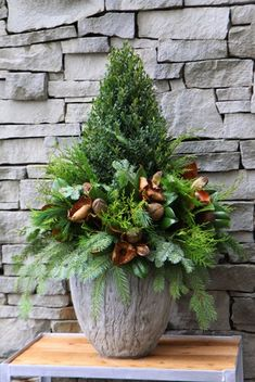 Paul Zammit's Step by Step: Winter Container - Toronto Botanical GardenToronto Botanical Garden Christmas Lanterns Diy, Outdoor Christmas Planters, Christmas Urns, Christmas Garden Decorations, Christmas Tablescapes, Christmas Wreaths, Christmas Ideas, Garden Xmas Ideas, Winter Planter