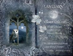"Book of Shadows Moon: ""January: Birch Moon,"" by Angie Latham. It makes a lovely Moon page for a Book of Shadows. I always heard January was Wolf moon? Frost Moon, Cold Moon, Tarot, Moon Magic, Lunar Magic, Sabbats, Book Of Shadows, Moon Child, Months In A Year"