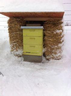 Keeping Bees Through the Winter... | Backyard Farmgals #backyardbeekeeper