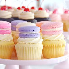 A little French Cupcake goodness to sweeten the morning  Happy weekend! #SweetBakeShop #Cupcakes #Macarons