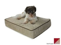 Snoozer Outlast Dog Bed Sleep System 3-Inch Thick, X-Large, Red/Camel > Can't believe it's available, see it now : dog beds
