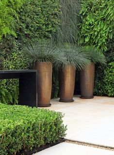 SA-Example of modern grass planters, geo black structure, black to green with metallic accent color contrast. Geo shape shrubs.