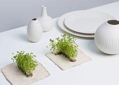 Groeipapier. Verkrijgbaar met alle soorten kruiden en bloemen, papier kan worden bedrukt.