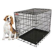 Coleman Wire Kennel For Pets - Small Coleman https://www.amazon.com/dp/B01J6BWJES/ref=cm_sw_r_pi_dp_x_3mFhybWPD4NY9