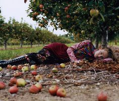 Autumn shooting. Vivid colors, calm nature