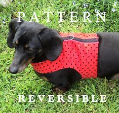 DIY. Dachshund small dog reversible adjustable butterfly style harness pattern. warmweenies.etsy.com