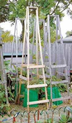 Tomato cages help tomato plants grow healthier and produce more fruit by keeping them off the ground. Tomato cages provide great support, but can get pricey to buy. Learn how to make your own with these 10 ideas. Tomato Cage Diy, Tomato Trellis, Diy Trellis, Tomato Cages, Garden Trellis, Trellis Ideas, Tomato Tomato, Cucumber Trellis, Trellis Design