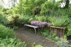 Ulf Nordfjell's garden in Nordland, Sweden, summer 2015