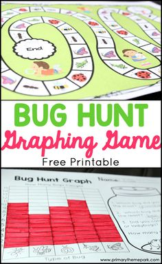 Bugs and Insects | Bug Hunt Activities | Bug Hunt Printable
