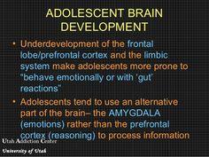 Utah Addiction Center University of Utah ADOLESCENT BRAIN DEVELOPMENT • Underdevelopment of the frontal lobe/prefrontal cortex and the limbic system make ...