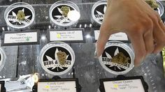Why Chocolope? To sell marijuana, you need a clever name