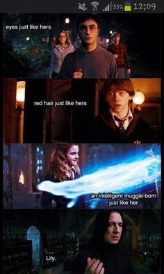 They are lily.... That's why Snape hated them! They reminded him of Lily!!!