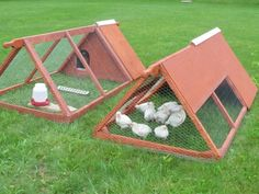 homesteading chicken coops | ... three different blueprints for a chicken tractor or chicken coop it