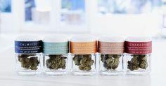 Canndescent marijuana company (http://mashable.com/2017/04/20/canndescent-marijuana-moods/#XBCTfSWJ75qA)