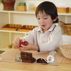 Montessori Classroom Activity Sets
