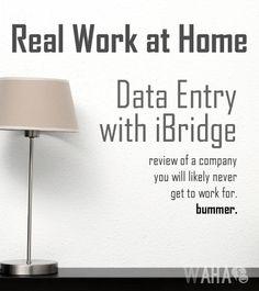 Online Data Entry for iBridge