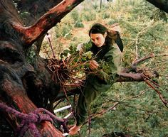 Julia Butterfly Hill is an environmental activist. From December 1997 - December 1999 she lived in Luna, a redwood in Humboldt County California and eventually saved the tree from logging. She continues to campaign on environmental issues. Mother Earth, Mother Nature, Sequoia, Giant Tree, Redwood Forest, Pop Culture References, Environmentalist, Environmental Issues, In The Tree