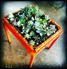 🌵🎨 Succulent table 🎨🌿  🌵 (Made from a table I found on the side on the road and mostly found succulents) 🌱  #nightmarefodder #flower #flowers #succulents #artsdistrictla #dtla #nature #painting #garden #art #artist #gardening #desertflowers #table #tattooart #cactus #cacti #la #uk #laartist #succulent #desertflower #succulenttable #etsy #contemporaryart #handmade #plant #plants #succulentart #flowerbed