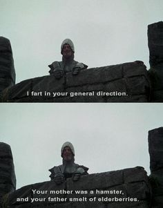this is why I love monty python
