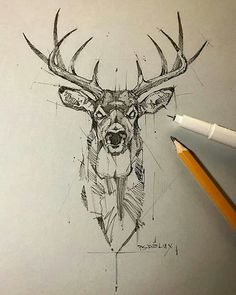 Five point by psdelux illustration inspiration - pencil-drawings Tattoo Sketches, Drawing Sketches, Tattoo Drawings, Art Drawings, Pencil Drawings, Illustration Blume, Illustration Sketches, Watercolor Illustration, Animal Sketches