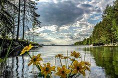 Katso, miten upealta Suomen luonto näyttää eri vuodenaikoina! – 29 kuvaa | Vivas Kevät photo:Asko Kuittinen