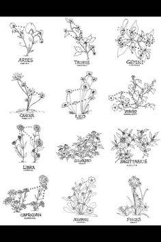 horoscope constellation flowers