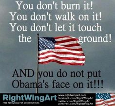 You don't do that to my American flag!